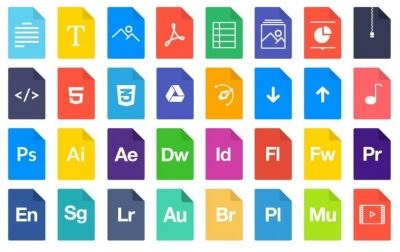 File Type Report Generation
